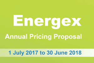Energex Annual Pricing Proposal - Energy Partners